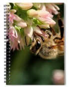 Bee On Flower 1 Spiral Notebook