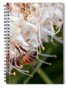 Bee On Flowers 1 Spiral Notebook