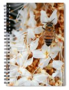 Bee On Flowers 2 Spiral Notebook