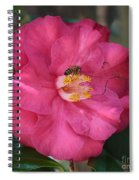 Bee On Pink Camellia Spiral Notebook