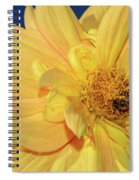 Bee On Pretty Dahlia By Kaye Menner Spiral Notebook