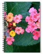 Bee On Rainy Flowers Spiral Notebook