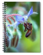 Bee On The Flower 2 Spiral Notebook
