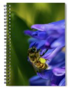 Bee On The Hyacinth Spiral Notebook