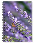 Bee On The Lavender Spiral Notebook
