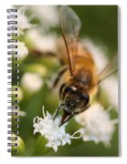 Bee On White Spiral Notebook