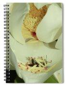 Bee Pollen Overdose Spiral Notebook