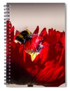 Bee Right Back With Red Flower Spiral Notebook