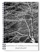 Beech Tree Branches, Light And Shadow Spiral Notebook