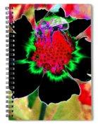 Beedazzling Spiral Notebook