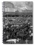Beef Industry, C1903 Spiral Notebook