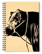 Beef Poster Spiral Notebook