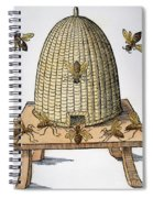 Beehive, 1658 Spiral Notebook