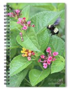 Beeing Amongst The Flowers Spiral Notebook