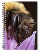 Bee's Eye Spiral Notebook