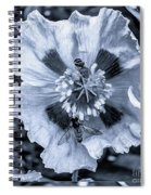 Double Bees On Poppy Bw Spiral Notebook