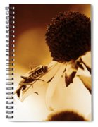 Beetle And Black Eyed Susan Spiral Notebook