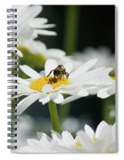 Beezy Day Ahead Spiral Notebook
