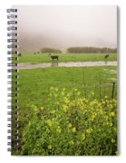 Before The Flood Spiral Notebook