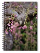 Beginning Of Bloomination Spiral Notebook