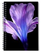 Beginning Of Love Spiral Notebook