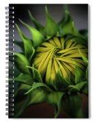 Beginnings Sunflower Xiii Spiral Notebook
