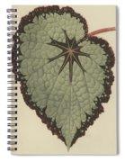 Begonia Rex, Variety Isis Spiral Notebook