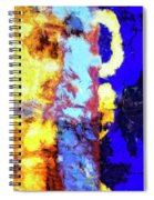 Behind The Curtain 2 Spiral Notebook