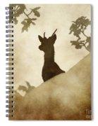 Behind The Rocks At Dawn Spiral Notebook