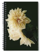 Beige Bold And Beautiful Spiral Notebook