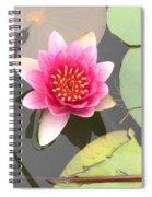 Beijing Lotus Spiral Notebook