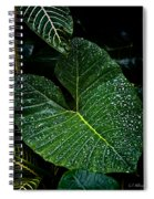 Bejeweled Leaf Spiral Notebook