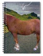 Belgian Horse Spiral Notebook