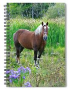 Belgian In Flowers Spiral Notebook