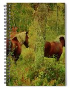 Belgians In Fall Spiral Notebook