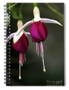 Bell Flower Spiral Notebook
