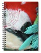 belle Ara Macao oiseaux tropicaux de Maui  Spiral Notebook
