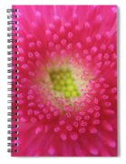 Bellis Perennis Spiral Notebook