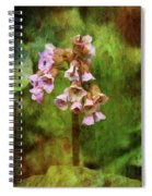 Bells 9186 Idp_2 Spiral Notebook