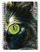 Beloved Shelby Spiral Notebook