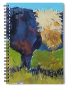 Belted Galloway Cow - The Blue Beltie Spiral Notebook