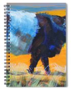 Belted Galloway Cow Side View Spiral Notebook