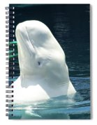 Beluga Whale Spiral Notebook