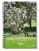 Bench Among Magnolia Spiral Notebook