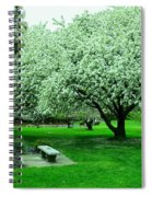 Bench Among.the Blossoms Spiral Notebook
