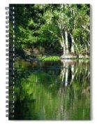 Bend Of The Ocklawaha River Spiral Notebook