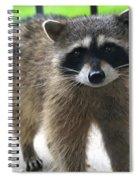 Bendit Mcstubb Spiral Notebook
