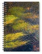 Beneath The Water Spiral Notebook