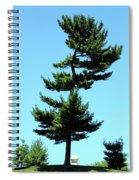 Beneath This Tree Lies Robert Edwin Peary Spiral Notebook