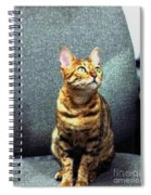 Bengal Cat Oil Pastel  Spiral Notebook
